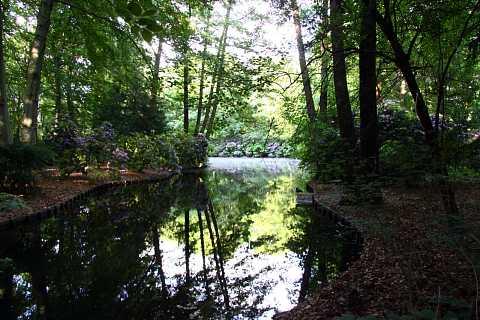 Tiergarten by Scott Joyce