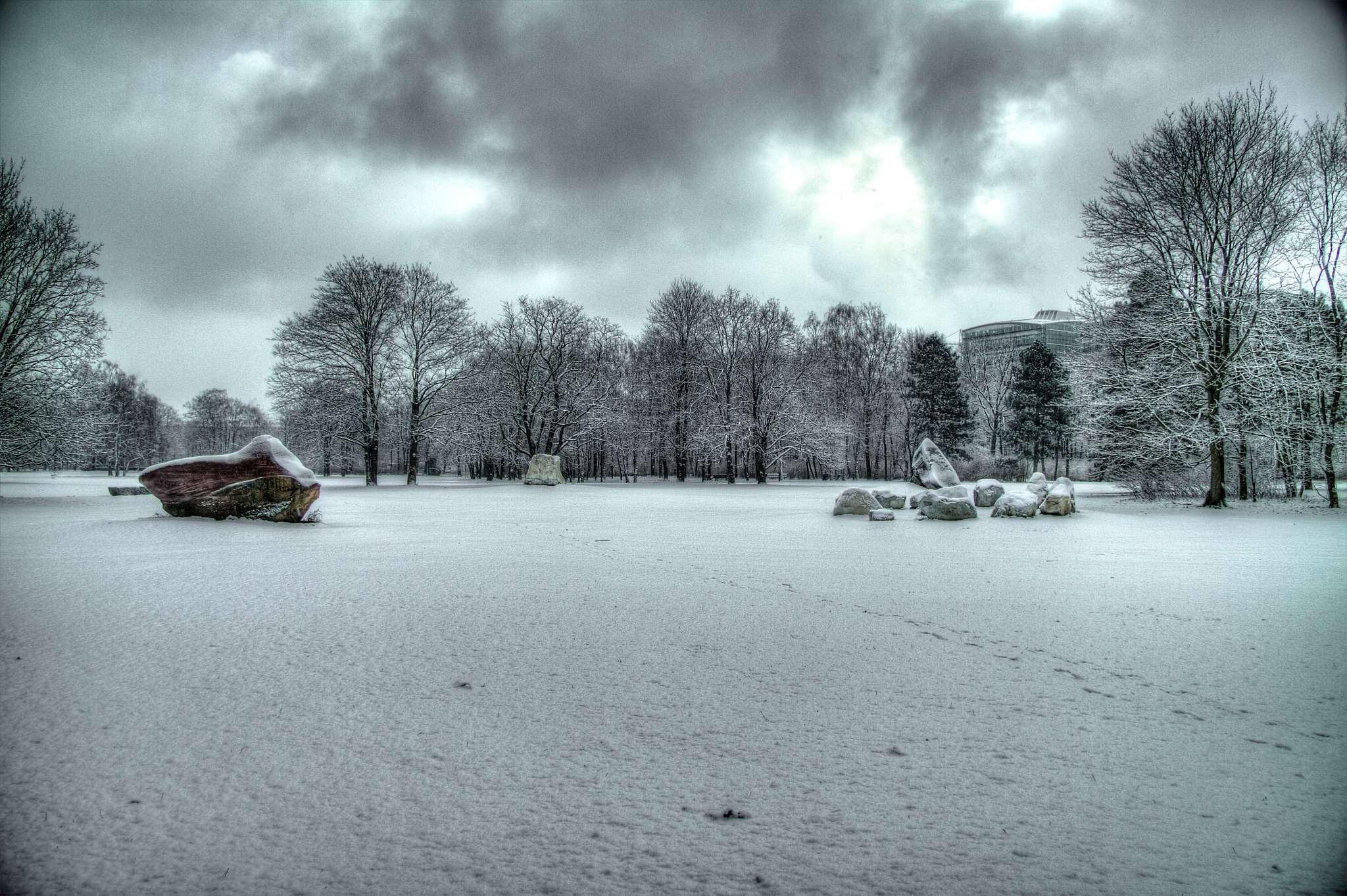 Tiergarten ice