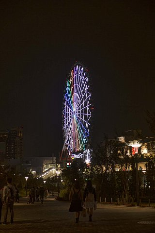 Big Wheel by night by Scott Joyce