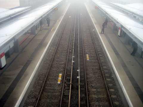 Tracks in the Fog by Scott Joyce