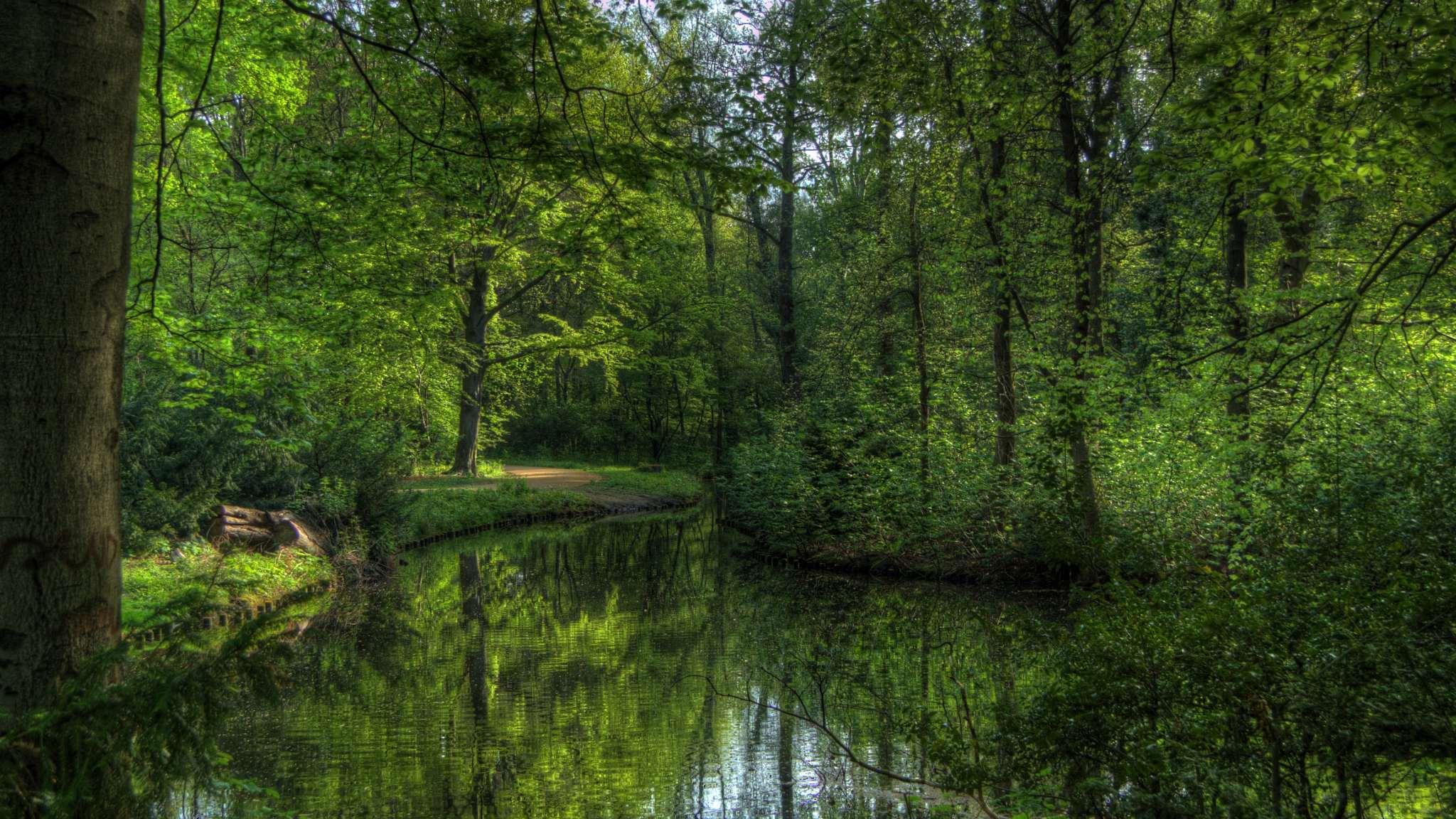 Tiergarten in Spring