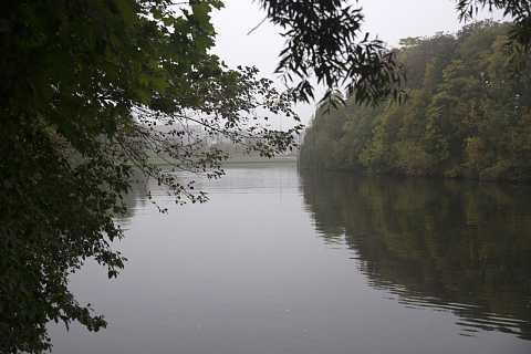 Foggy river by Scott Joyce