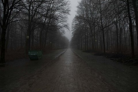 Berlin Fog February 2017