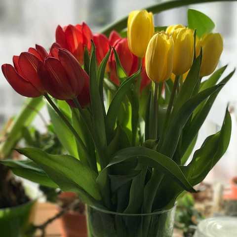 Happy Sunday! Seems like Berlin is pretending it's spring. But w by Scott Joyce