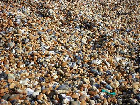 Brighton September 2008 035 by Scott Joyce