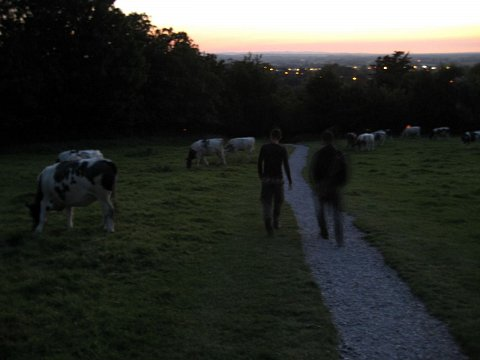 Glastonbury 2007 059 by Scott Joyce