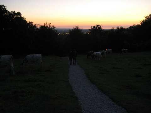 Glastonbury 2007 060 by Scott Joyce