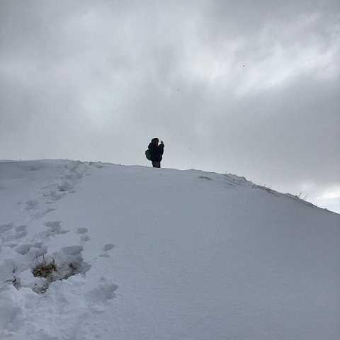 On top of the wooooorld! by Scott Joyce