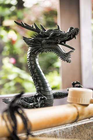 Dragon by Scott Joyce