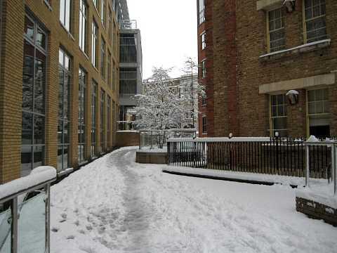 Snow 021 by Scott Joyce