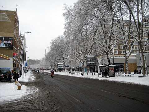 Snow 012 by Scott Joyce