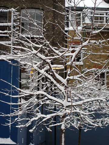 Snow 020 by Scott Joyce