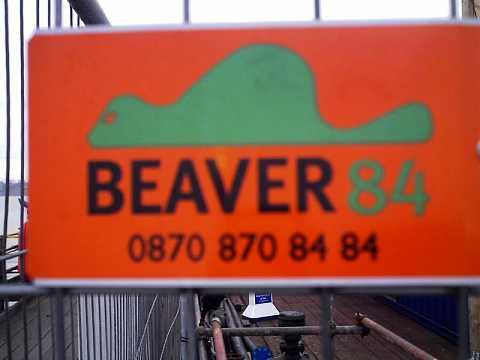 BEAVER! by Scott Joyce