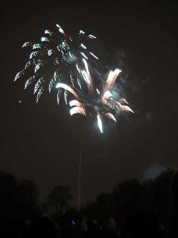 fireworks 114 by Scott Joyce