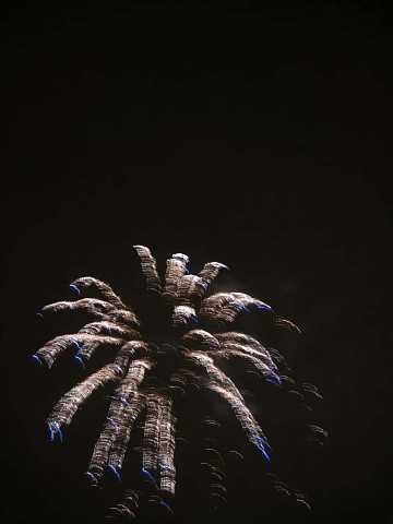 fireworks 117 by Scott Joyce